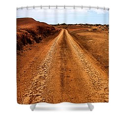 A Road Less Traveled Shower Curtain by DJ Florek