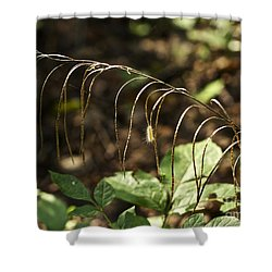 A Speck In God's Eye Yet Precious In His Sight Shower Curtain by Mother Nature