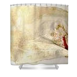 A Story Shower Curtain by  Bellavia