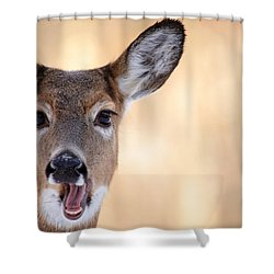 A Talking Deer Shower Curtain by Karol Livote