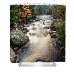 A Touch Of Fall Shower Curtain by Mark Papke