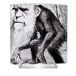 A Venerable Orang Outang Shower Curtain by English School