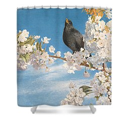 A Voice Of Joy And Gladness Shower Curtain by John Samuel Raven