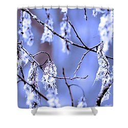 A Withered Branch Shower Curtain by Toppart Sweden