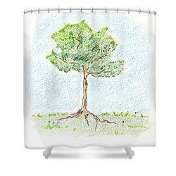A Young Tree Shower Curtain by Keiko Katsuta