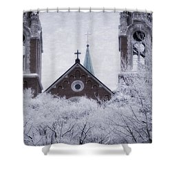 Above It All Shower Curtain by Joan Carroll