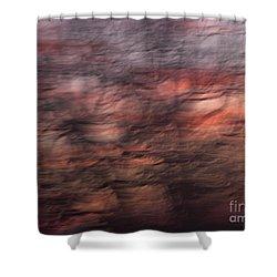 Abstract 10 Shower Curtain by Tony Cordoza