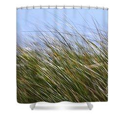 Abstract 18 Shower Curtain by Tony Cordoza