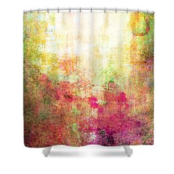 Abstract Print 14 Shower Curtain by Filippo B