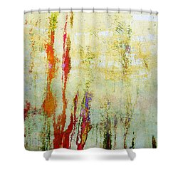 Abstract Print 17 Shower Curtain by Filippo B