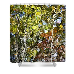 Abstract Tree Reflection Shower Curtain by Christina Rollo