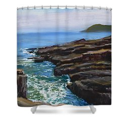 Acadia National Park  Shower Curtain by Jack Skinner