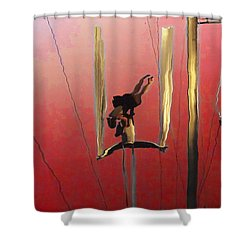 Acrobatic Aerial Artistry1 Shower Curtain by Anne Mott