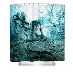 adagio for a broken dream II Shower Curtain by Joachim G Pinkawa