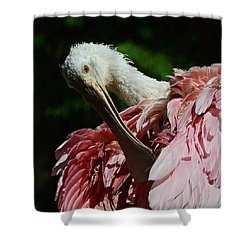 After The Bath Shower Curtain by Stuart Harrison