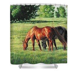 Afternoon Graze Shower Curtain by Carrie L Lewis