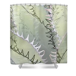 Agave Abstract Shower Curtain by Ben and Raisa Gertsberg