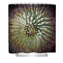 Agave Spikes Shower Curtain by Alan Socolik