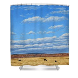 Grazing Shower Curtain by James W Johnson