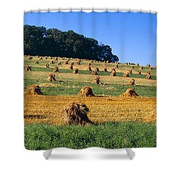 Agriculture - Contour Strips Shower Curtain by Timothy Hearsum
