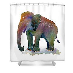 All Dressed Up Shower Curtain by Amy Kirkpatrick