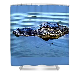 Alligator With Spider Shower Curtain by Robin Lewis