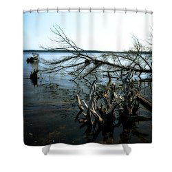 Along The Lost Lake Trail Shower Curtain by Michelle Calkins