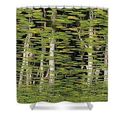 Altered Reflections Shower Curtain by Howard Ferrier
