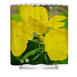 Amarillo Sunshine Shower Curtain by Sonali Gangane
