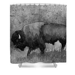Monochrome American Buffalo 3  Shower Curtain by Hailey E Herrera