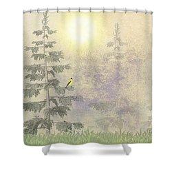 American Goldfinch Morning Mist  Shower Curtain by David Dehner
