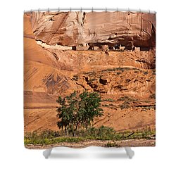 Ancient Anasazi Pueblo Canyon Dechelly Shower Curtain by Bob and Nadine Johnston