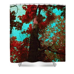 Ancient One Shower Curtain by Shawna  Rowe