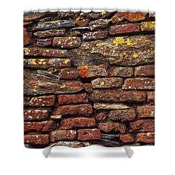 Ancient Wall Shower Curtain by Carlos Caetano