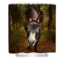 And You Are  ??? Shower Curtain by Donna Kennedy