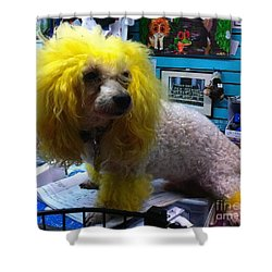 Andrew The Poodle Shower Curtain by Saundra Myles