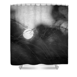 Anesthesia Shower Curtain by Taylan Soyturk
