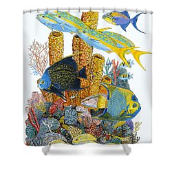 Angel Fish Reef Shower Curtain by Carey Chen