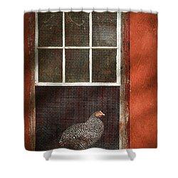 Animal - Bird - Chicken In A Window Shower Curtain by Mike Savad