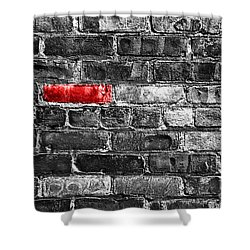 Another Brick In The Wall Shower Curtain by Delphimages Photo Creations