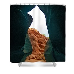 Antelope Canyon Bear Shower Curtain by Dany Lison