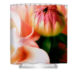 Anticipation Shower Curtain by Rory Sagner