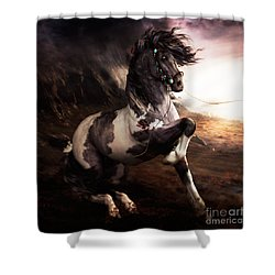 Apache Blue Shower Curtain by Shanina Conway