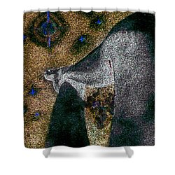 Aphrodite Holds Council With The Pleiades Shower Curtain by Nova Cynthia Barker