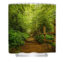 Appalachian Trail At Newfound Gap Shower Curtain by Stephen Stookey