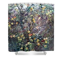 Apple Tree  Shower Curtain by Ylli Haruni