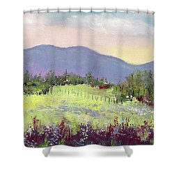 Approaching Home Shower Curtain by David Patterson
