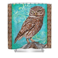Aqua Barn Owl Shower Curtain by Debbie DeWitt