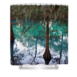 Aqua Beauty Shower Curtain by Kim Pate