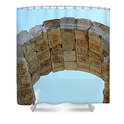 Arched Gate Of The Tetrapylon Shower Curtain by Tracey Harrington-Simpson